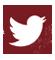 BannerTwitter